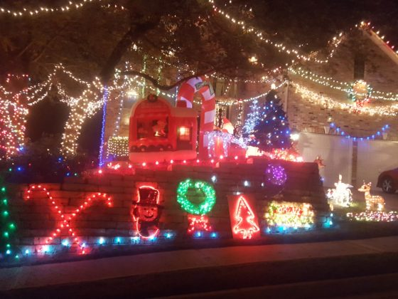 Holiday Light Display #2 - Steiner Ranch